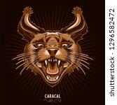 wild cat caracal t shirt print  ...   Shutterstock .eps vector #1296582472