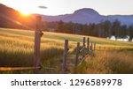 Sunset Fence Farm Field Sigdal...