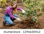 hardworking girl hoeing weeds... | Shutterstock . vector #1296630412