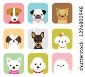 dog cute     Shutterstock .eps vector #1296802948