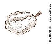 tropical exotic fruit durian... | Shutterstock .eps vector #1296829882