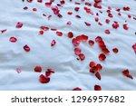 wedding for honeymoon sweet... | Shutterstock . vector #1296957682