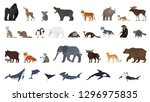 animal set. collection of... | Shutterstock .eps vector #1296975835