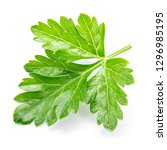 parsley. parsley isolated. top... | Shutterstock . vector #1296985195