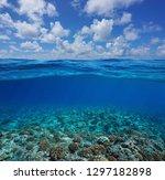 underwater coral reef seabed... | Shutterstock . vector #1297182898
