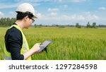 young asian male agronomist or... | Shutterstock . vector #1297284598