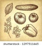 vegetables set. ink sketch on...   Shutterstock .eps vector #1297511665