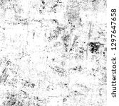 texture black and white grunge. ... | Shutterstock . vector #1297647658