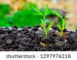 background growing  money ...   Shutterstock . vector #1297976218