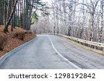 kislovodsk  russia. december 28 ... | Shutterstock . vector #1298192842