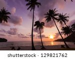 silhouetted of coconut tree... | Shutterstock . vector #129821762