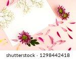 flowers  petals and background... | Shutterstock . vector #1298442418