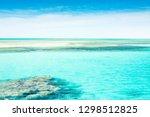 red sea coast shore in the ras... | Shutterstock . vector #1298512825