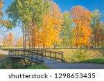 golden autumn in the park....   Shutterstock . vector #1298653435