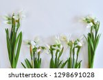 bouquet of snowdrops on a white ...   Shutterstock . vector #1298691028