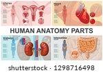 cartoon human organs... | Shutterstock .eps vector #1298716498