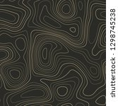 topographic contours  seamless... | Shutterstock .eps vector #1298745238