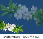 sakura blooming  cherry blossom ...   Shutterstock .eps vector #1298746468