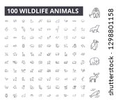 wildlife animals editable line... | Shutterstock .eps vector #1298801158