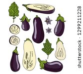 set with eggplants on white...   Shutterstock .eps vector #1299211228