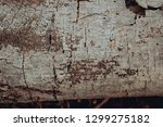 Wood Texture Background