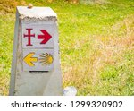 traditional shell sign and... | Shutterstock . vector #1299320902