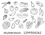 vegetables doodle set isolated... | Shutterstock .eps vector #1299504262