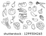 organic food design template.... | Shutterstock .eps vector #1299504265