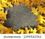 gold autumn leaves frame with... | Shutterstock . vector #1299532552