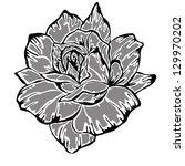 rose motif pattern on white... | Shutterstock . vector #129970202