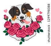 cute smiling herding dog... | Shutterstock .eps vector #1299798388