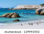 Penguins Walk On Sunny Beach....