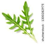 fresh rocket leaves isolated on ... | Shutterstock . vector #1300282975