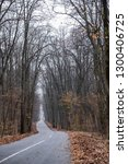 road through woods | Shutterstock . vector #1300406725
