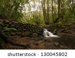 little rainfall at la gomera | Shutterstock . vector #130045802
