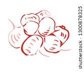 radish sketch design | Shutterstock .eps vector #1300878325