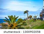 mar del plata  argentina   26... | Shutterstock . vector #1300902058