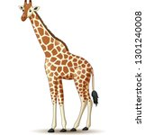 cartoon giraffe isolated on... | Shutterstock .eps vector #1301240008