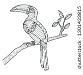 tropical hornbill bird on the...   Shutterstock .eps vector #1301423815