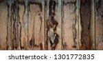 brown wooden texture flooring... | Shutterstock . vector #1301772835