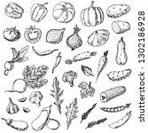 set of vegetables. vector...   Shutterstock .eps vector #1302186928