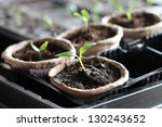 garden grow vegetable. eco.... | Shutterstock . vector #130243652