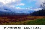 dramatic late autumn landscape | Shutterstock . vector #1302441568