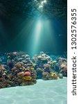 sea or ocean underwater seabed | Shutterstock . vector #1302576355