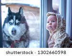a black white husky with blue... | Shutterstock . vector #1302660598