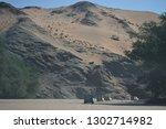namib desert  namibia   8... | Shutterstock . vector #1302714982