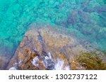 sea summer blue coral reef    Shutterstock . vector #1302737122