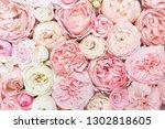 summer blossoming delicate rose ...   Shutterstock . vector #1302818605