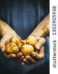 organic vegetables. farmers... | Shutterstock . vector #1302905938