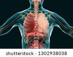 pneumonia medical concept  3d... | Shutterstock . vector #1302938038